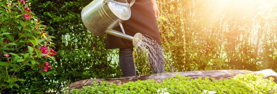 soin du jardin
